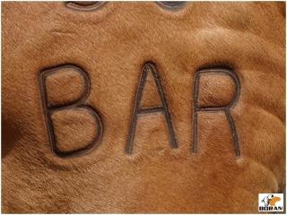 Bar Circle Branding